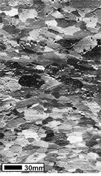 Omphacite FSD image